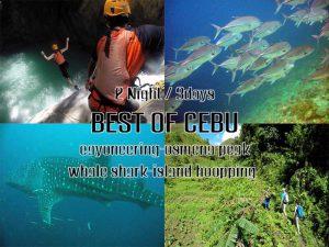 Moalboal Cebu Adventure Package - Canyoneering - Oslob Whale shak snorkeling - Oemena peak - island hopping