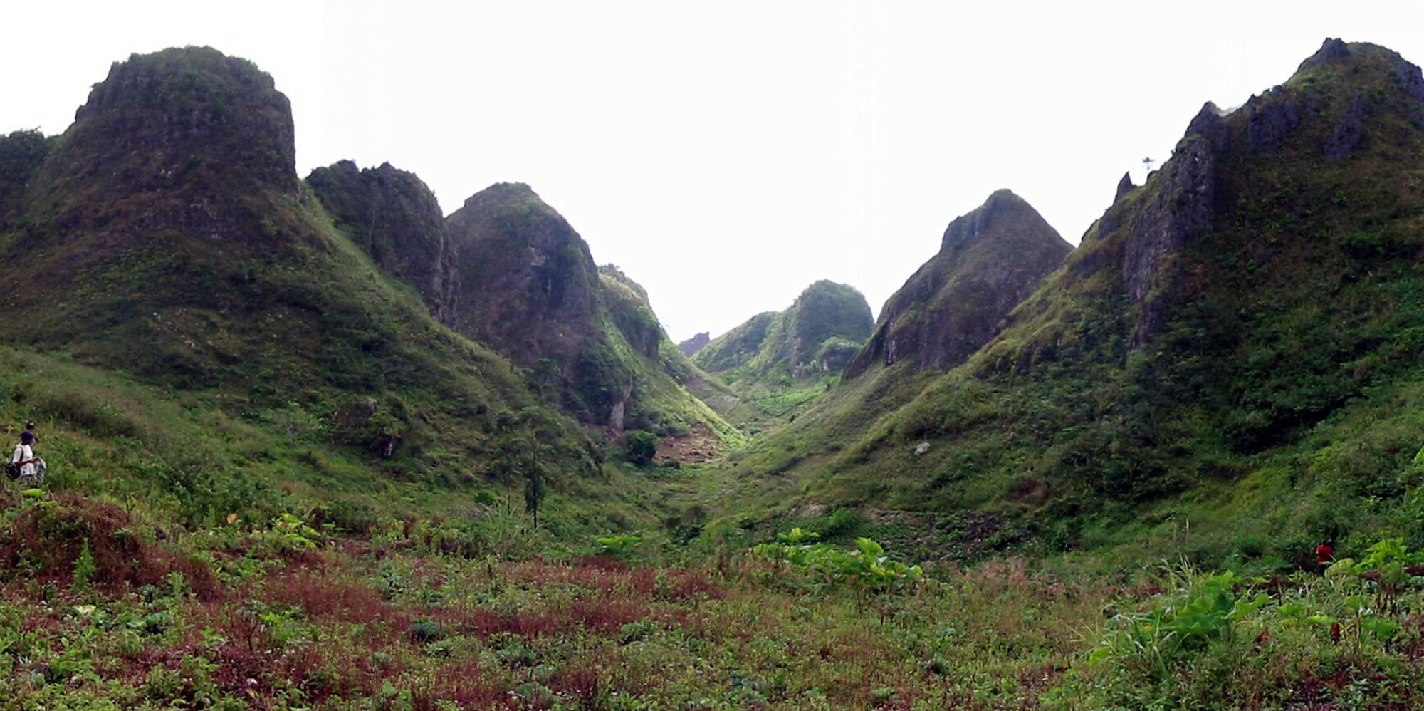 Hike to Osmena Peak Cebu