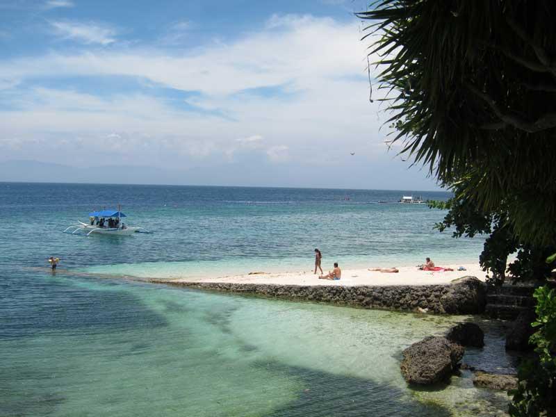 Hotel Beach Resorts Hostel Accommodation Moalboal Cebu