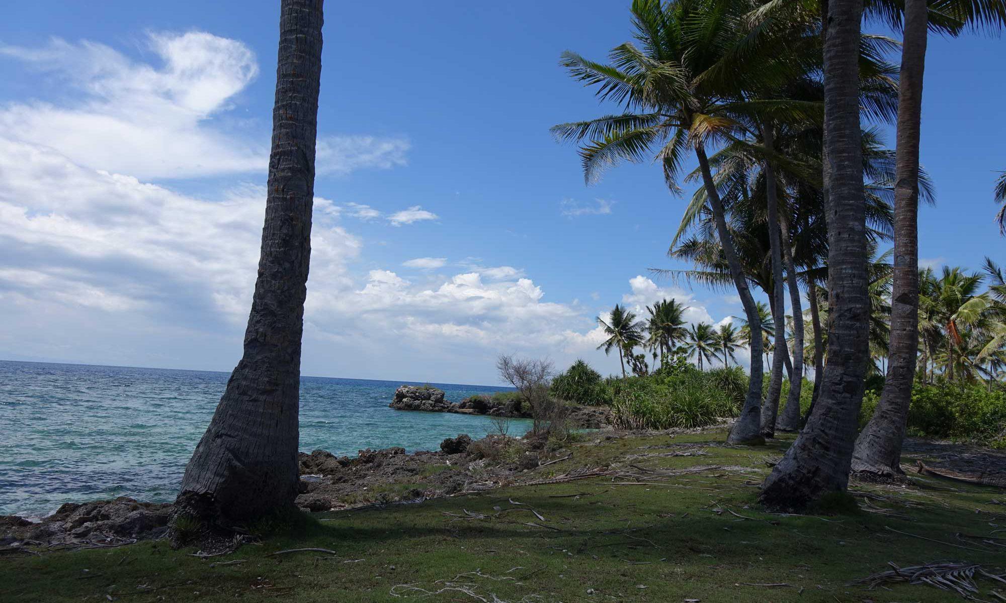Moalboal Beaches Cebu