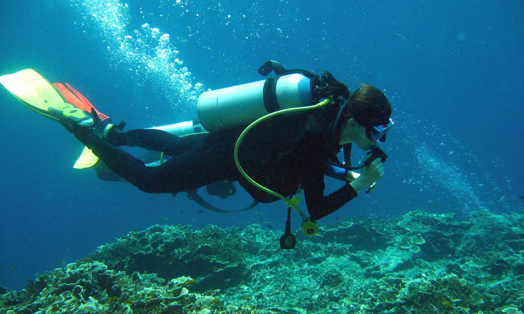 Scuba Diving in Moalboal Cebu