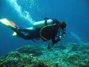 Scuba Diving in Moalboal Cebu